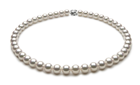TRUE AAA Quality 8.5 x 9mm Natural White Akoya Cultured Pearl Necklace