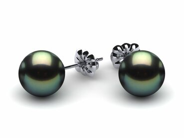 Tahitian Pearl Earring Studs   Starting at $165