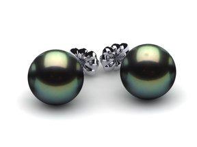 9mm Tahitian Cultured Pearl Earring Studs