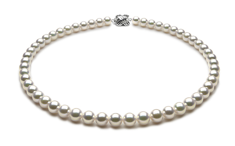 TRUE AAA Quality 7.5 x 8mm Natural White Akoya Cultured Pearl Necklace
