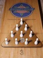 Shuffleboard Bowling Game